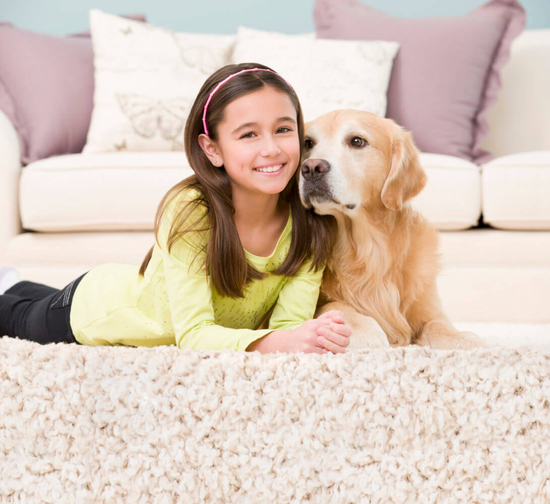 carpet cleaning clinton township