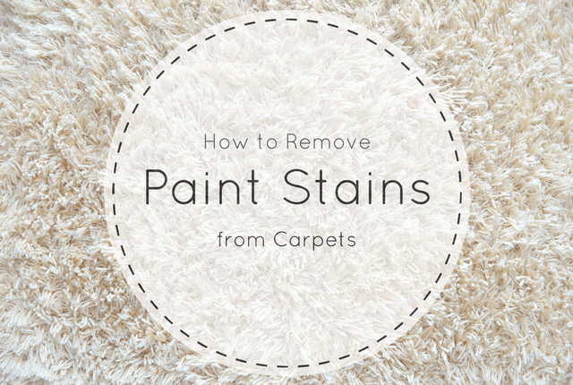 How To Remove Paint From Carpet Short Stop Chem Dry