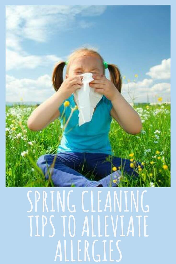 Spring CLEANING Tips to Alleviate Allergies-3