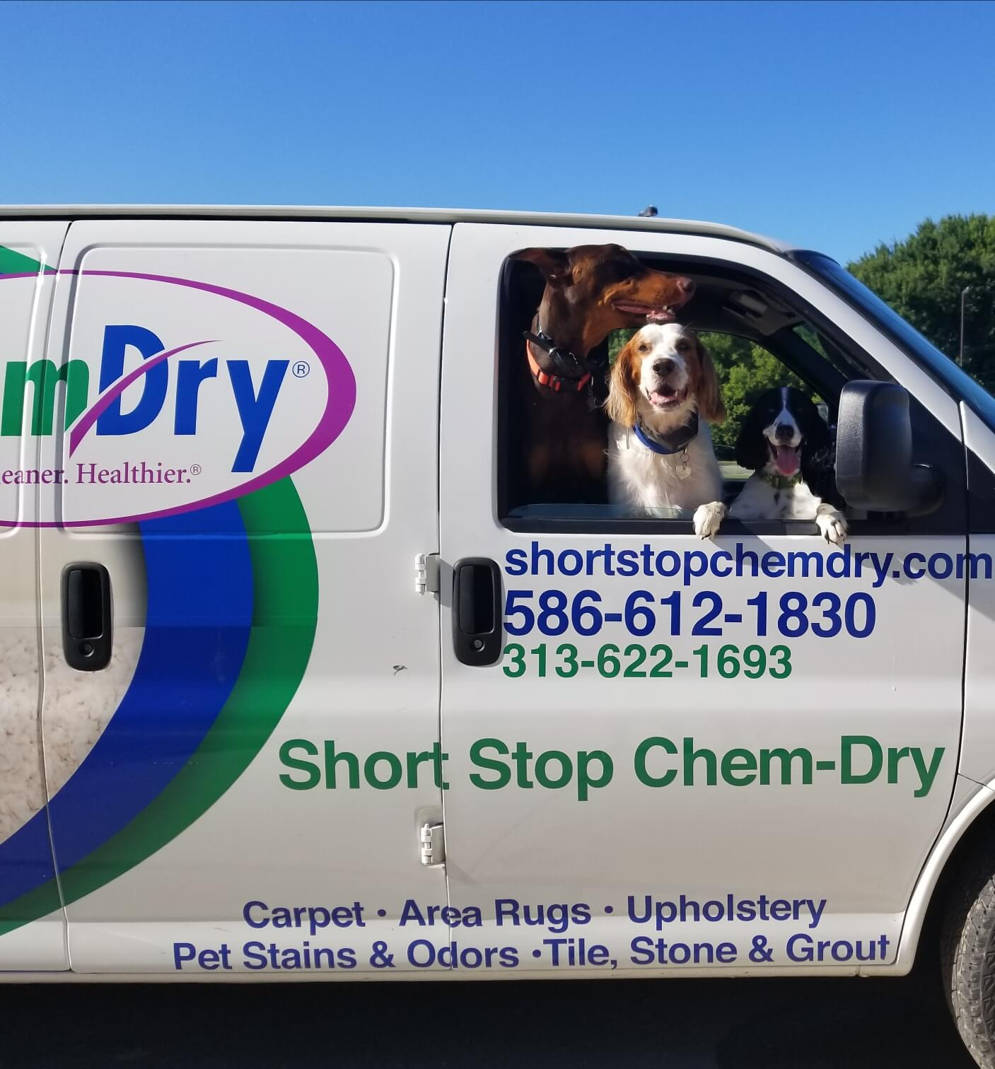 Chem-Dry's Cleaning for the Paws