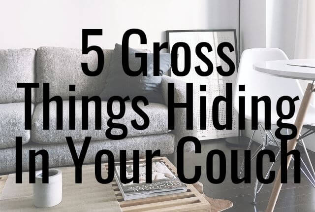 5 Gross Things Hiding In Your Couch